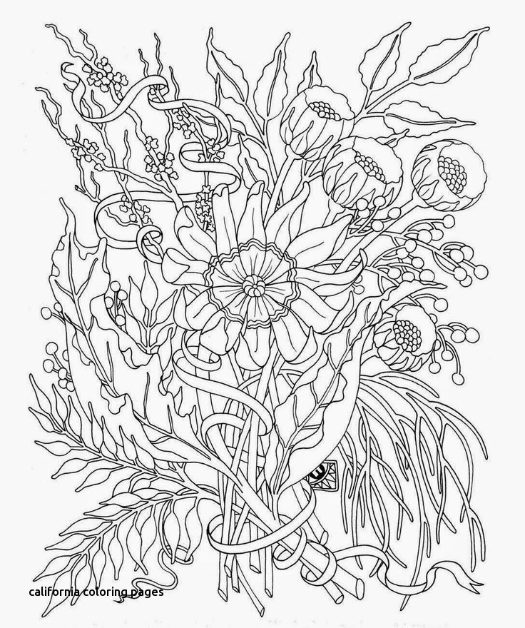 736x880 Best Color Me Images On For California Coloring Pages