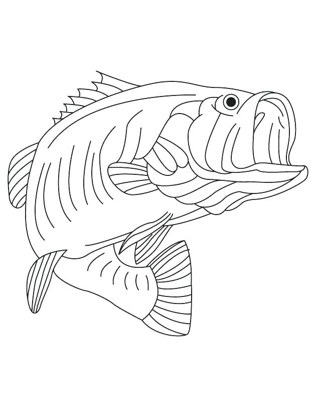 630x810 California Republic Flag Coloring Page Bass State Freshwater Fish