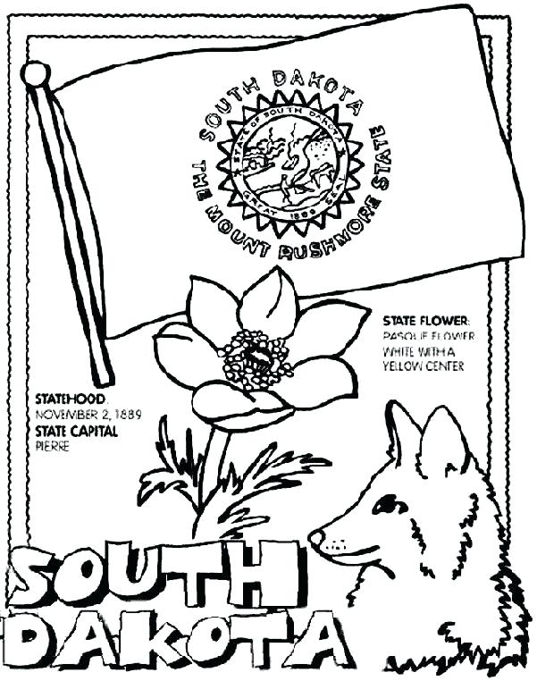 601x762 California State Flower Coloring Page Flag Coloring Page Click