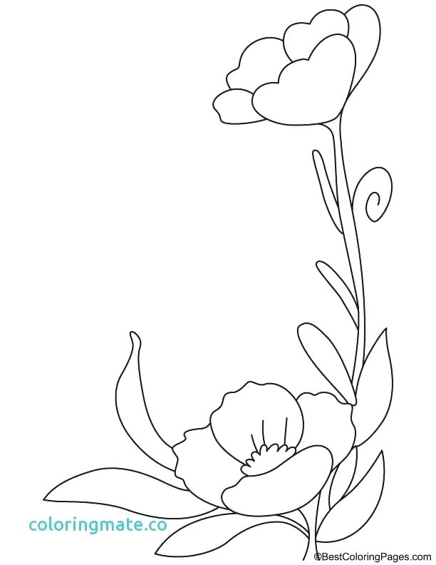 612x792 Flowers Coloring Pages With Poppy Flowers Coloring Pages