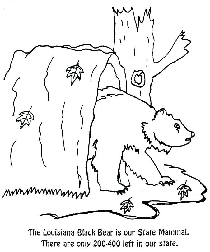 675x810 New State Flag Coloring Pages For State Insect A State Mammal