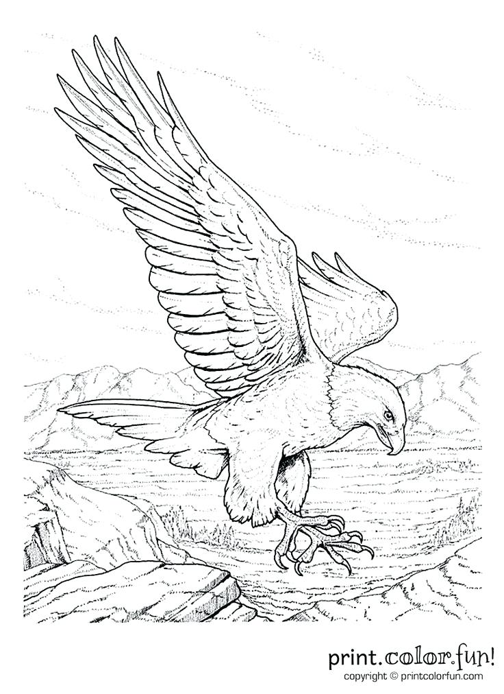 736x1012 Gold Rush Coloring Pages Snap Shot Coloring Page California Gold