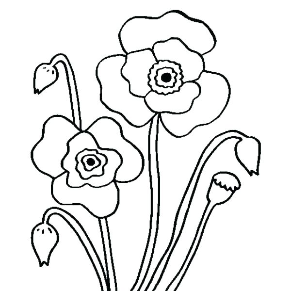 600x600 California Coloring Pages Grizzly Bear Coloring Pages As Awe