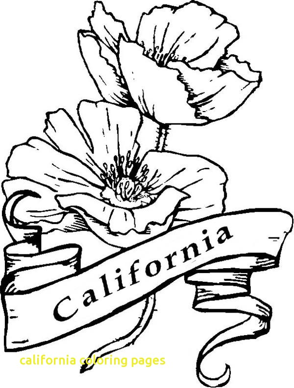 600x793 California Coloring Pages With California Poppy Coloring Page