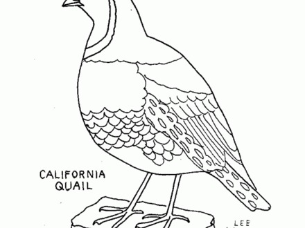 440x330 Manna Coloring Page, Manna From Heaven Coloring Online Super