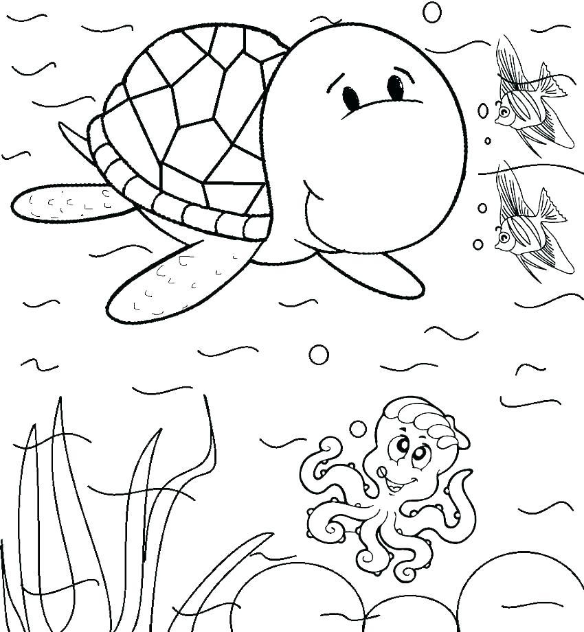 850x921 Quail Coloring Page Quail Coloring Page Quail Animal Coloring