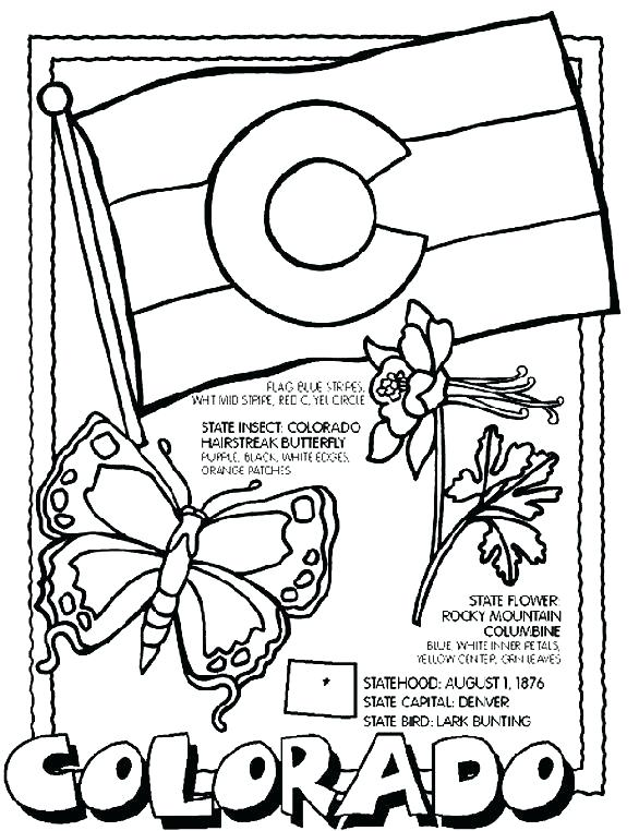 586x762 California State Flower Coloring Page State Coloring Pages Free