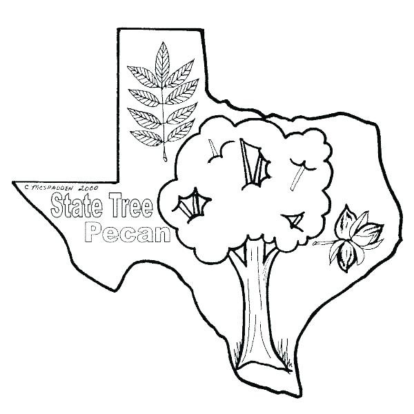 600x600 Southern Kit Fox Coloring Pages Download Print Online Southern Kit