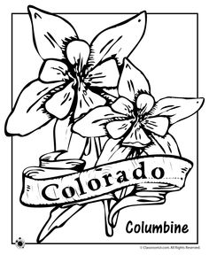 236x305 Superb Flower Coloring Page