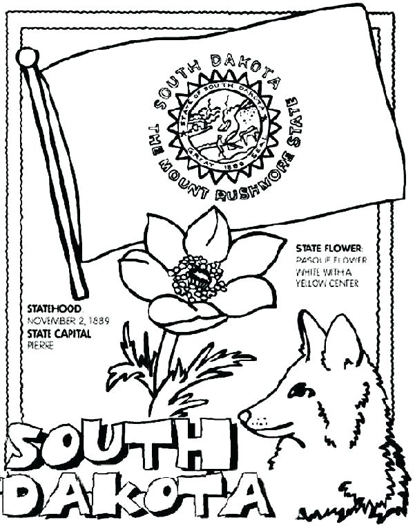 601x762 Ca State Symbols Coloring Pages Flower Page Free To Print