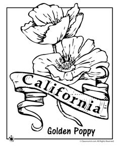 236x305 Free Printable For California State Symbols And Geography Terms