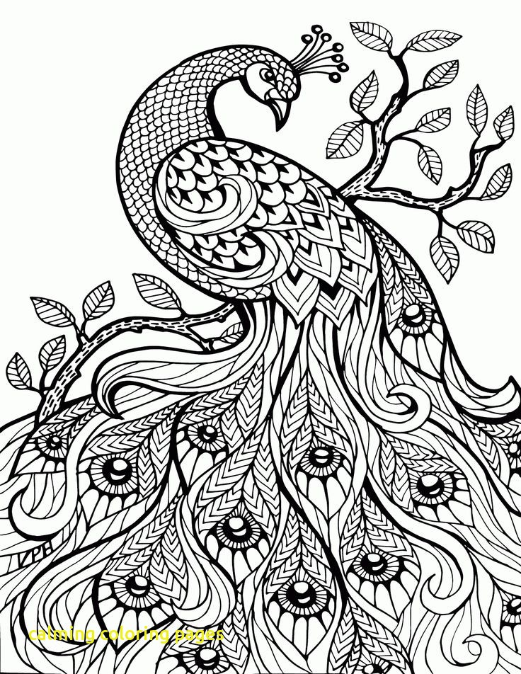 736x952 Calming Coloring Pages With Colouring Pages Free Download Best