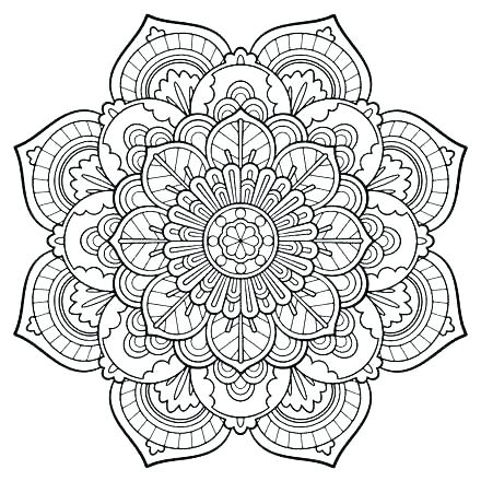 440x440 Camera Coloring Page Cool Adult Coloring Pages For Floral Camera