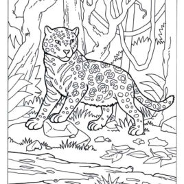 268x268 Coloring Pages Of Camouflage Animals Archives
