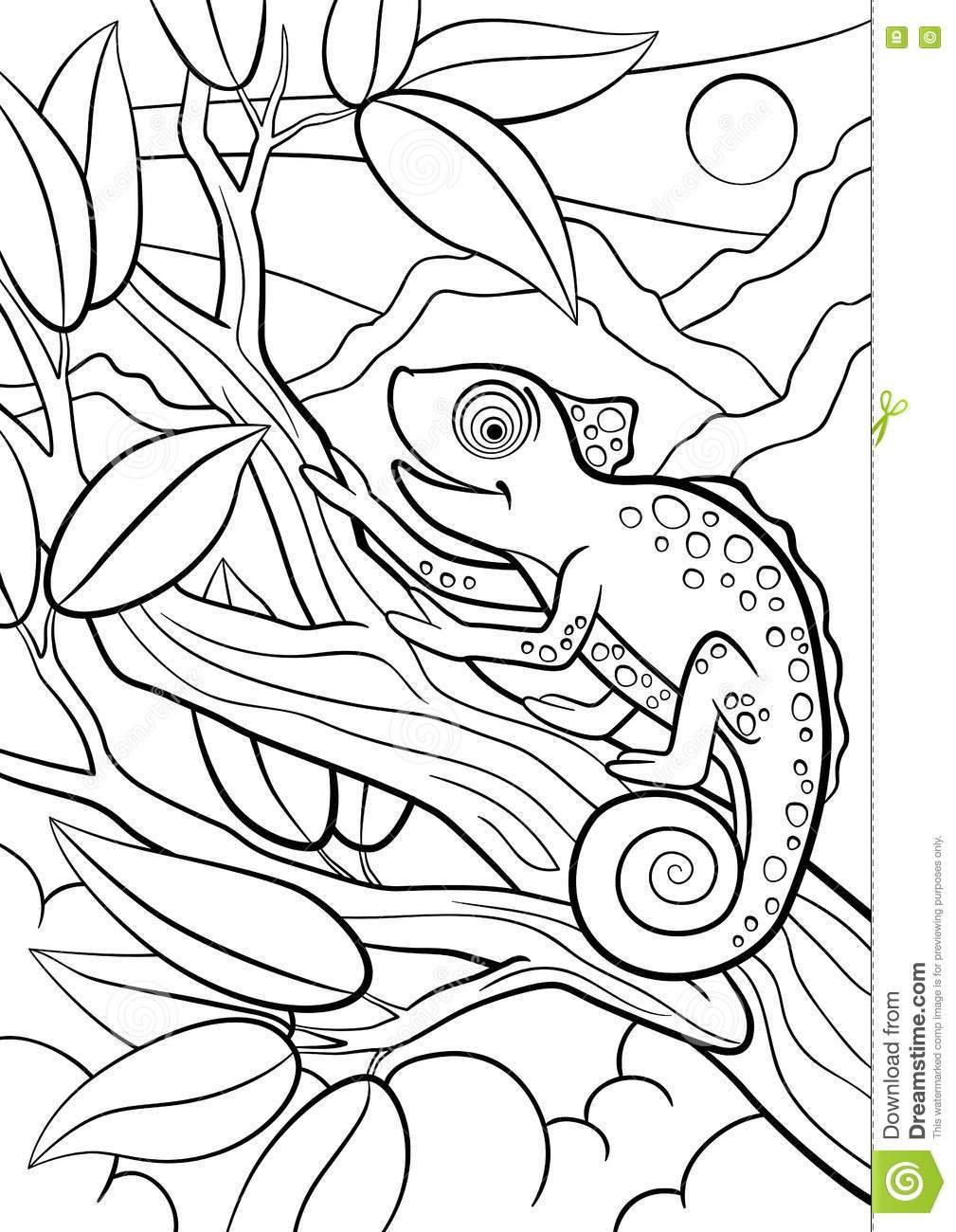 1009x1300 Animal Camouflage Coloring Pages