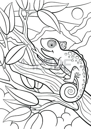 318x450 Camouflage Coloring Pages Coloring Pages Wild Animals Little Cute