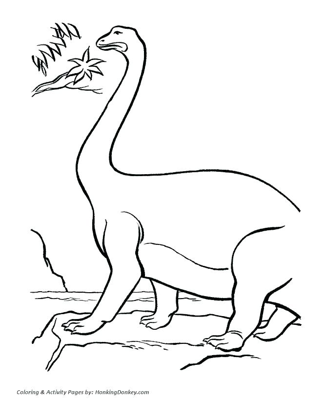 670x820 Camouflage Coloring Pages Extinct Camouflage Pattern Coloring