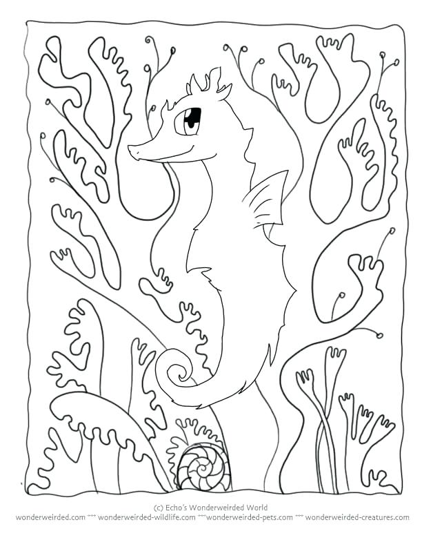 612x792 Stunning Camouflage Coloring Pages Animal Camouflage Coloring Page