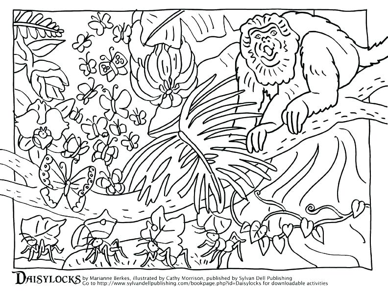 792x612 Camouflage Coloring Pages