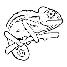 230x230 Chameleon Coloring Pages