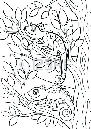 318x450 Camouflage Coloring Camouflage Coloring Pages Animal Camouflage