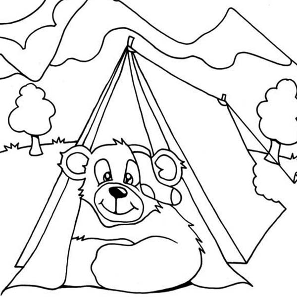 600x600 Bear Get In Camping Tent Coloring Page Coloring Sun
