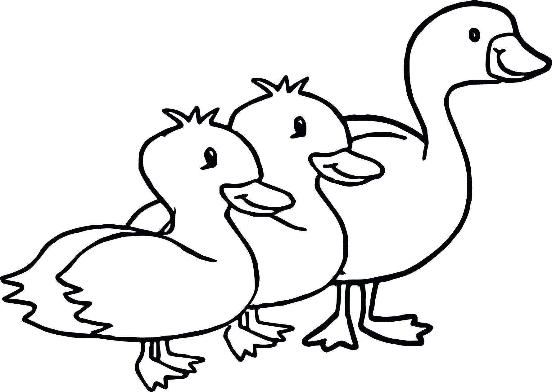1778x1265 Flying Goose Coloring Page Gooses Birds Walking Pages For Kids