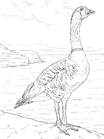 360x480 Goose Coloring Page Goose Coloring Page Mother Goose Printable