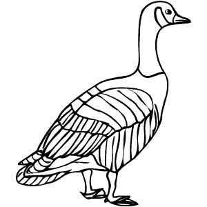 300x300 Old Goose Coloring Sheet