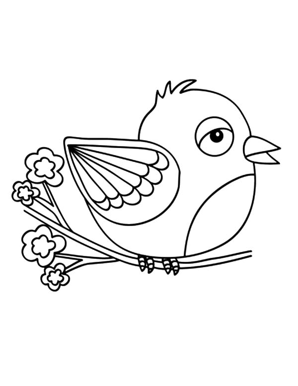 600x777 Canary Bird Begin To Fly Coloring Pages Best Place To Color
