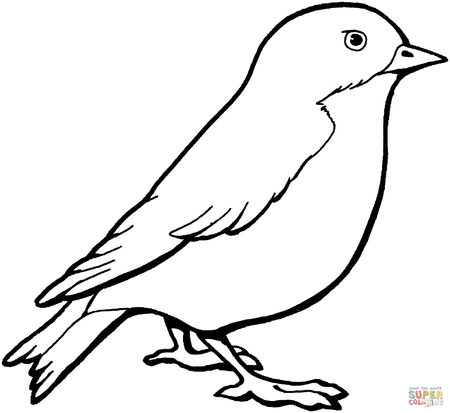 1500x1378 Coloring Pages Of Birds Elegant Perched Canary Bird Coloring Page