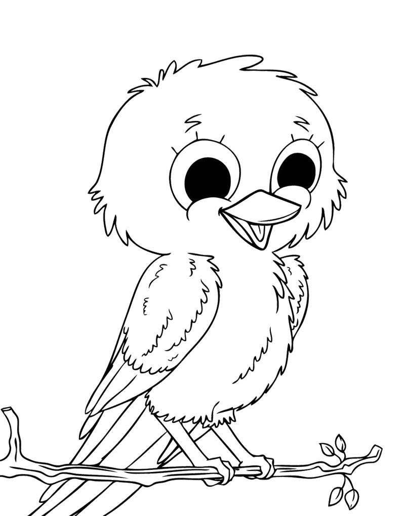800x1020 Improved Bird Pictures To Color Perched Canary Coloring Page Free