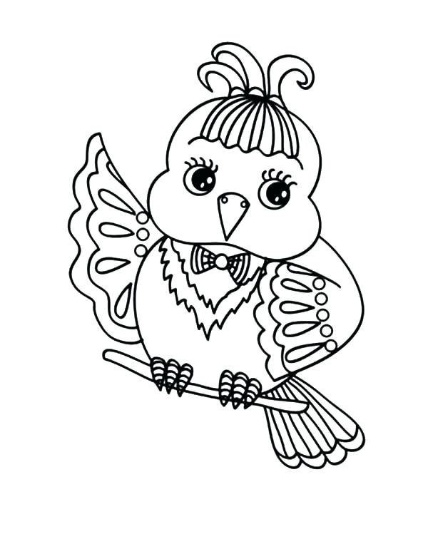 600x777 Birds Colouring Pages Pdf Printable Coloring Canary Bird Coloring
