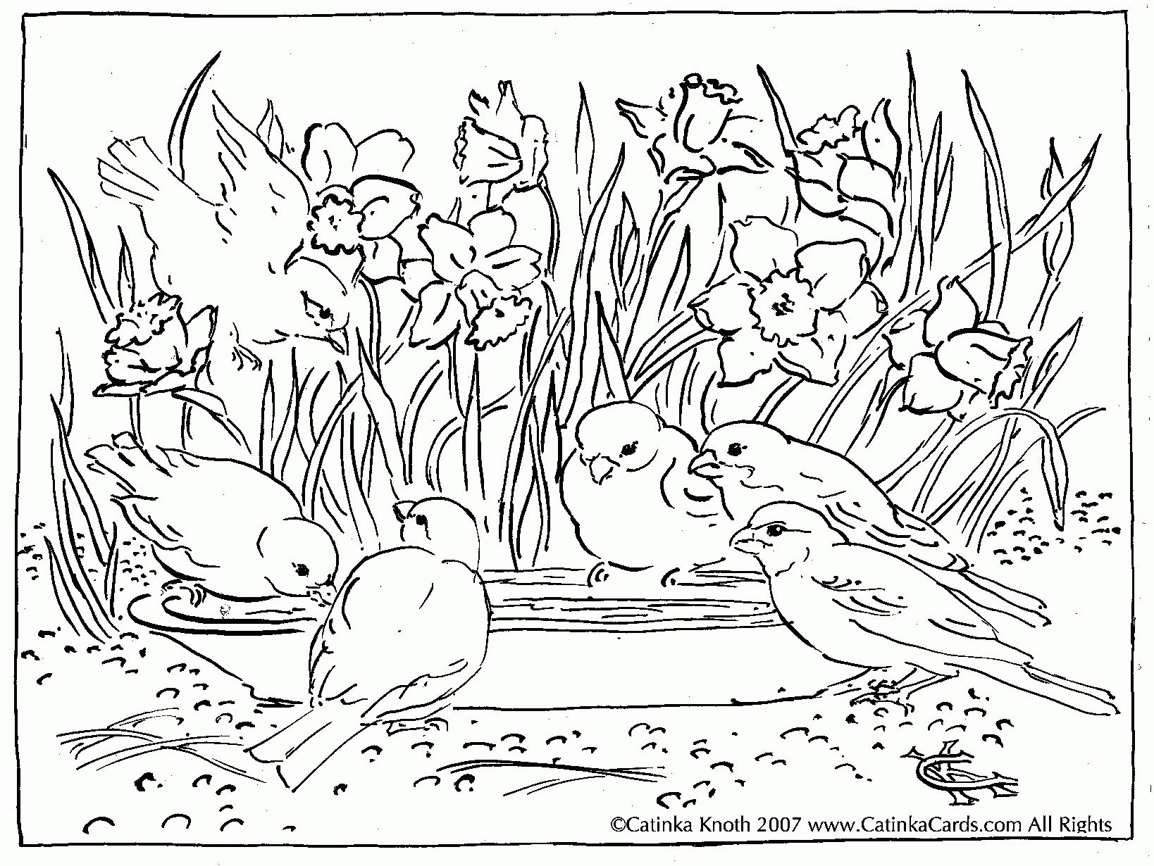 1638x1230 Pond Scene Coloring Page See More About Pond Scene Coloring Page