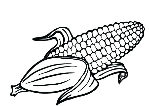 Free Printable Corn Maize Coloring Pages | 427x600