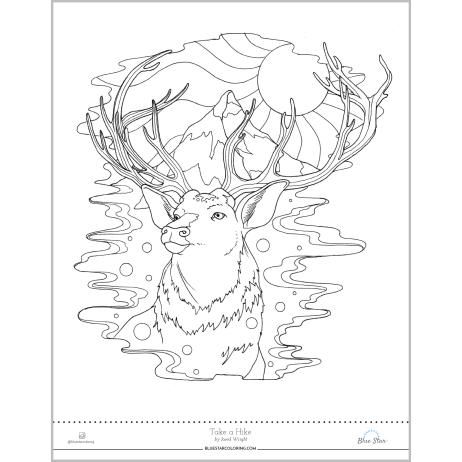 462x462 Coloring Page Buck