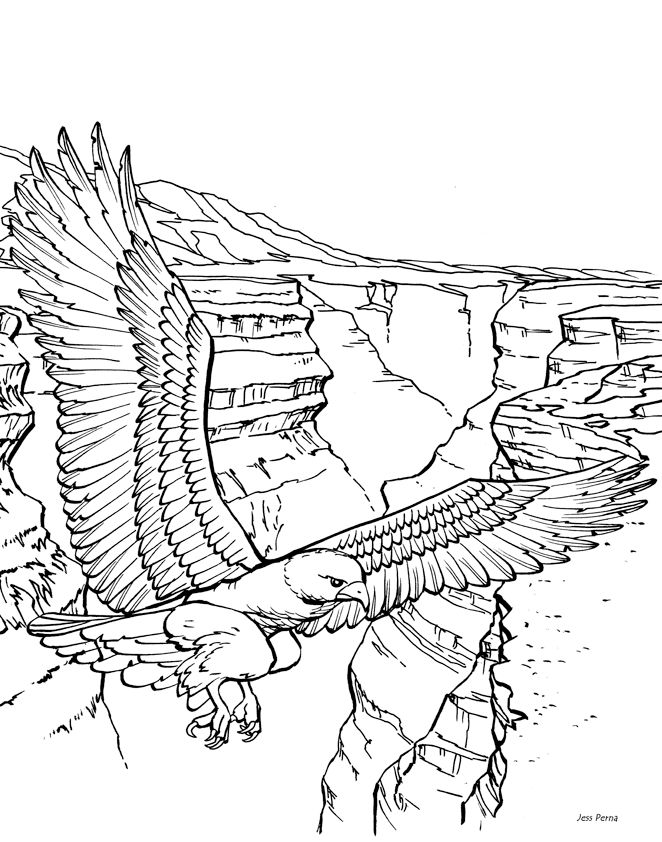 Canyon Coloring Page
