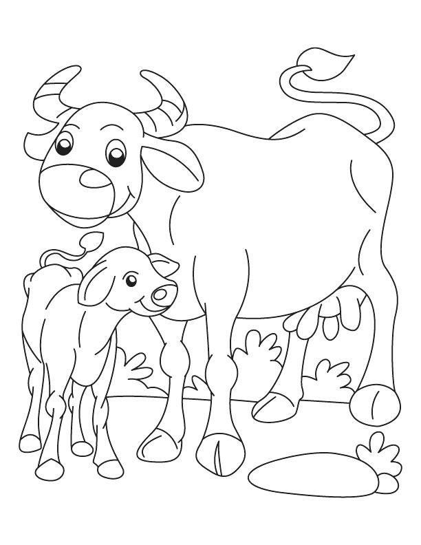 612x792 Buffalo Coloring Page Buffalo And Calf Coloring Page Buffalo