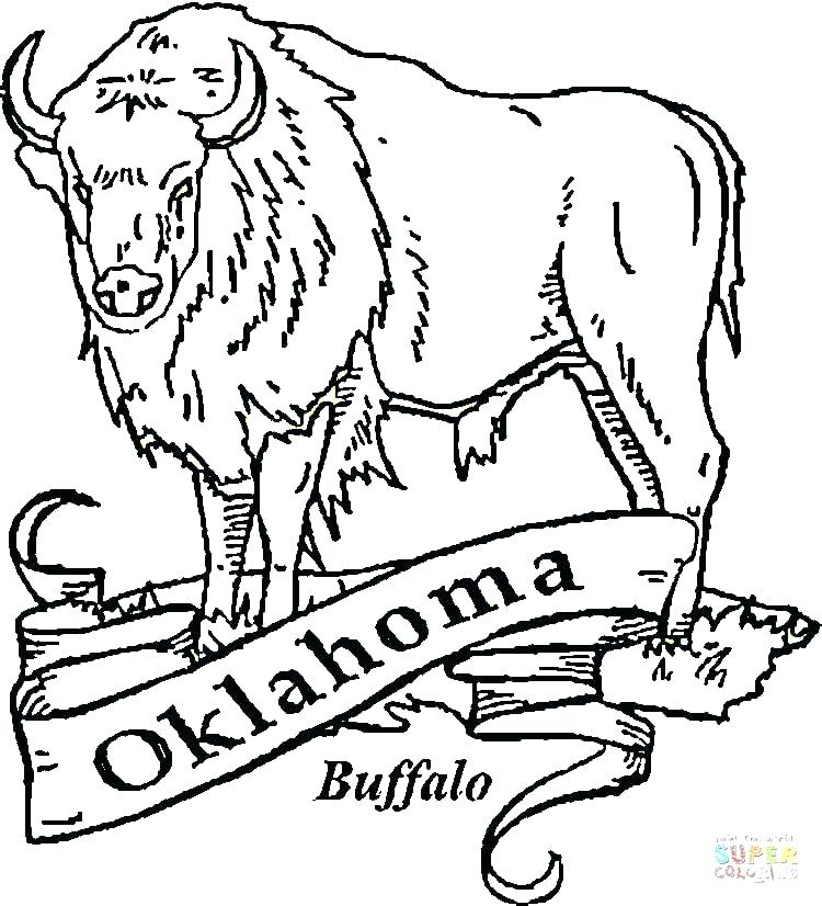 750x826 Buffalo Coloring Page Buffalo Coloring Page Buffalo Coloring Page