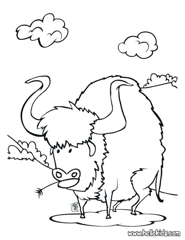 618x799 Buffalo Coloring Page Click To See Printable Version Of Buffalo