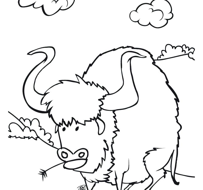 820x768 Bison Coloring Pages Buffalo Coloring Page Bison Printable