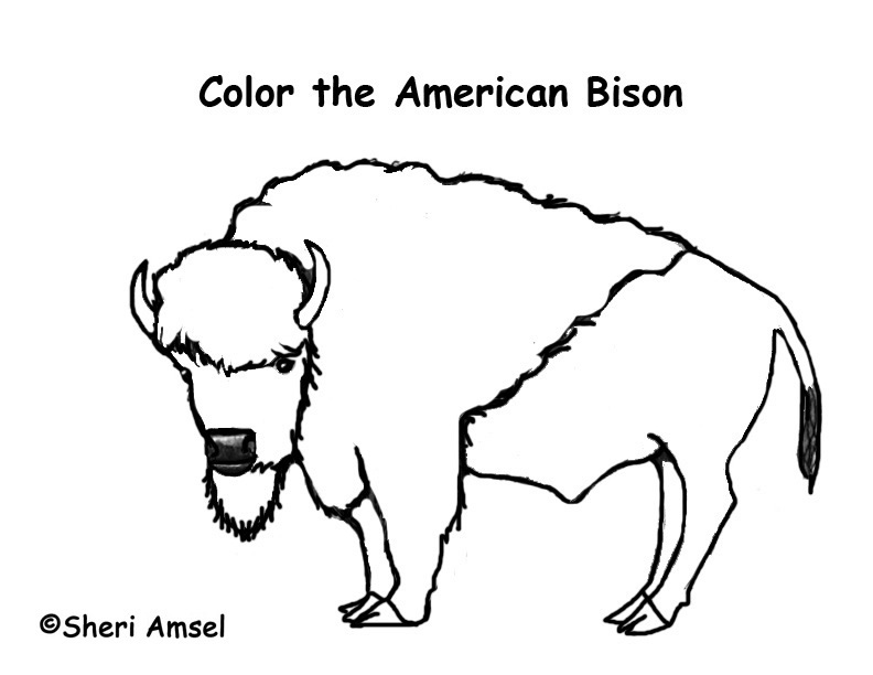 792x612 Bison Coloring Pages Coloring Page For Kids Kids Coloring