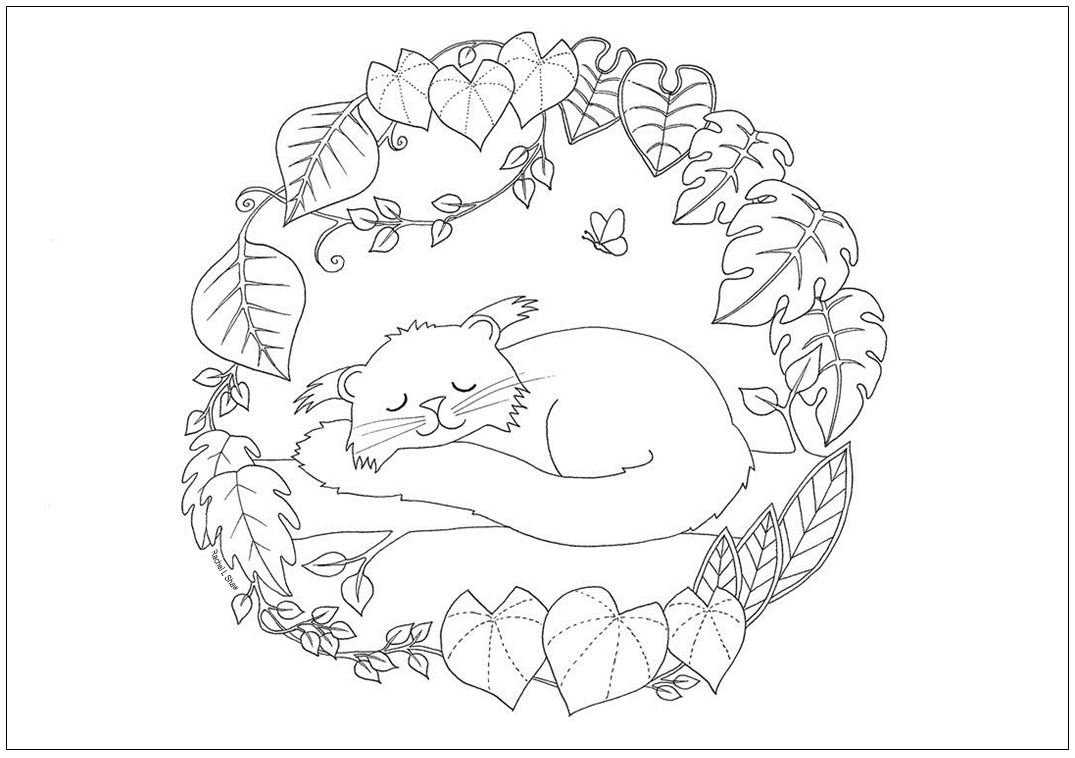 1075x758 Colouring Page Rachel L Shaw