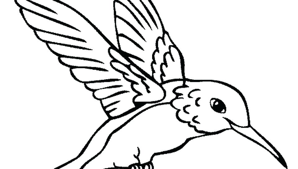 960x544 Cardinal Bird Printable Coloring Pages Free Coloring Bird Coloring