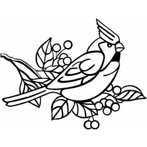 300x300 Angry Cardinal Bird Coloring Page