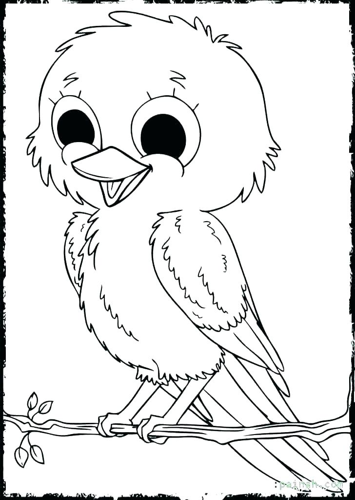 728x1024 Free Printable Cardinal Coloring Page For Kids Cardinal Coloring