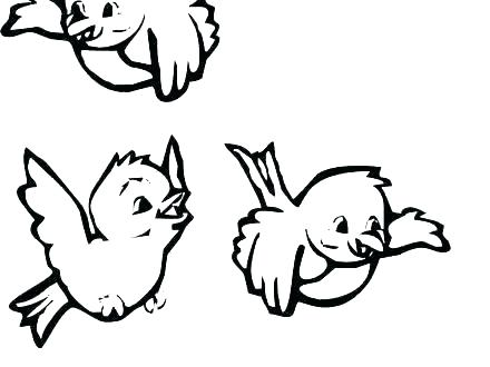440x330 Lovely Cardinal Coloring Page Ideas Coloring Page Cardinal