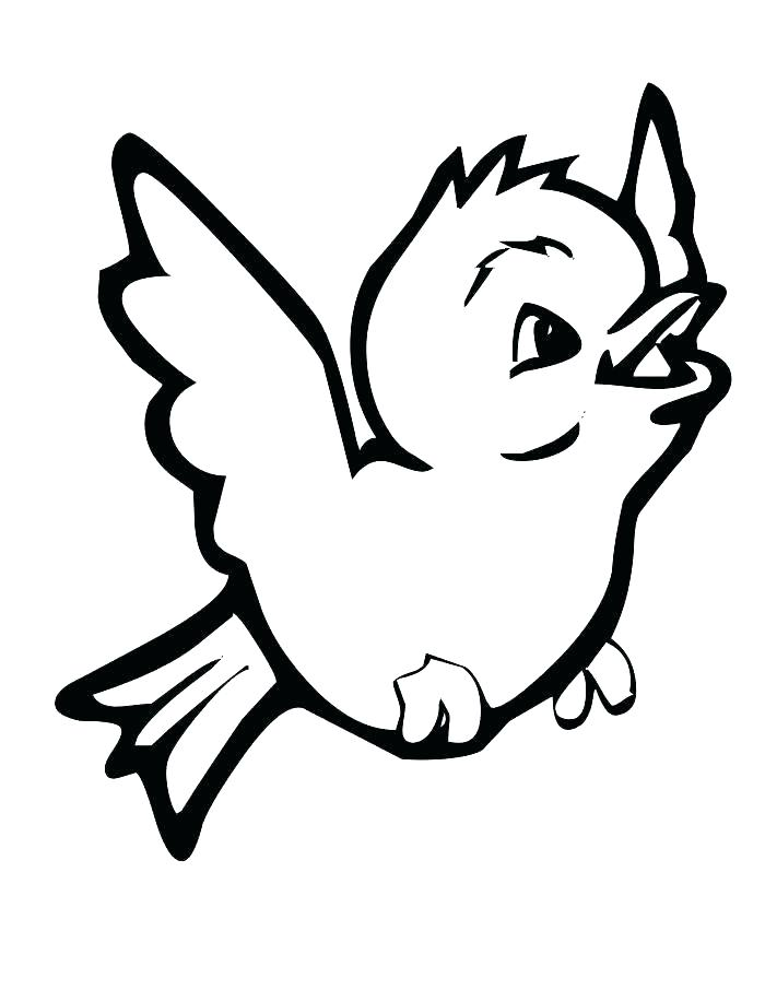 700x906 Cardinal Bird Coloring Page Bird Coloring Pages Printable Coloring