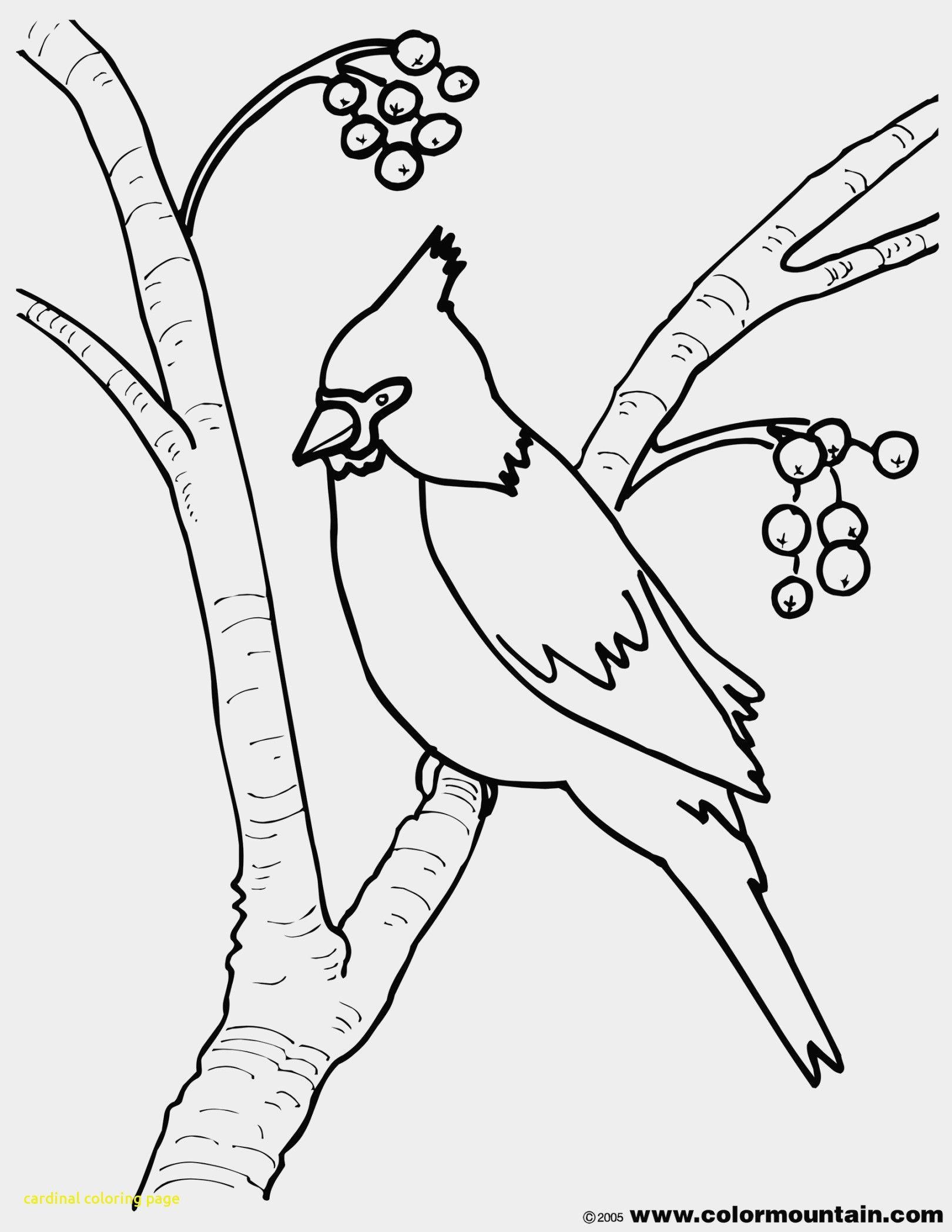 1620x2096 Shocking St Louis Cardinals Logo Coloring Page Supercoloring Diy