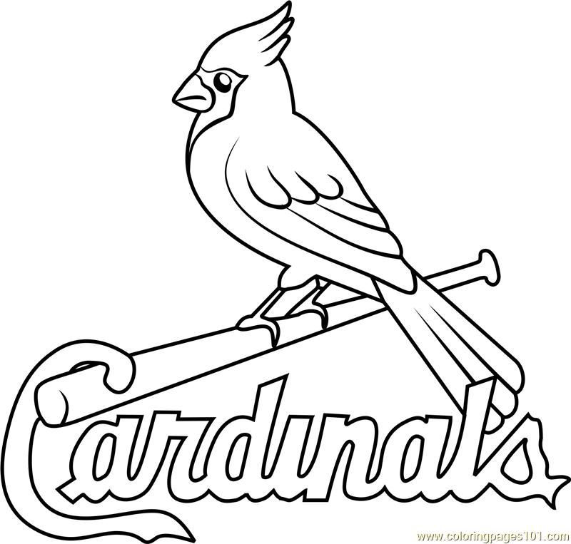 800x763 St Louis Cardinals Logo Coloring Page